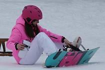 Sáňky, boby i snowboardy. Lyžařský areál u Tašova praskal ve švech