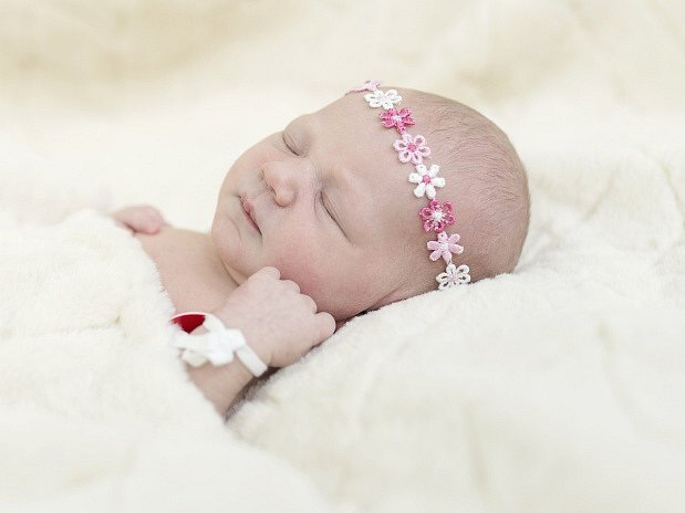 Nela Schwerhartová  se narodila Nicole  Dandové a Martinu Schwerhartovi z Litoměřic 27.3. v 18:58 hodin v Roudnici n.L. (2,95 kg a 51 cm).