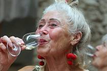 Litoměřičtí opět oslavují víno. V pátek začaly již tradiční Vinařské Litoměřice.