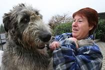 Majitelka útulku pro psy a kočky v Řepnici na Litoměřicku Miluše Maskulanisová