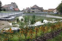 NOVÁ OZDOBA VETLÉ. Práce na úpravách rybníka začaly letos v březnu. V říjnu na náves přibudou ještě nové hodiny. Obec je pořídila za finanční odměnu získanou v soutěži Vesnice roku. Bílou stuhu a k ní 125 tisíc korun porota Vrbici udělila za práci s mláde