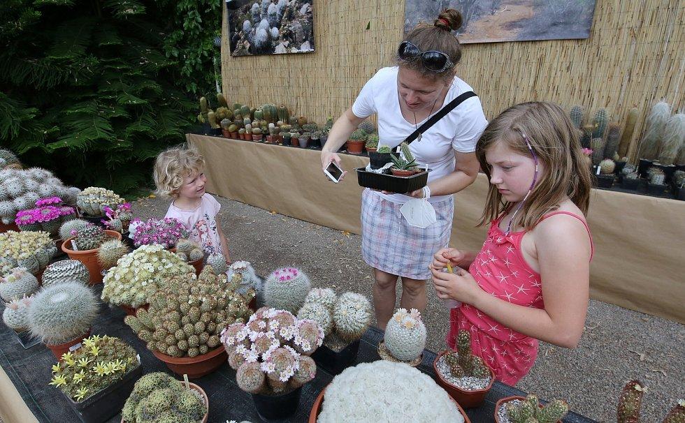Výstava kaktusů a sukulentů ve skleníku zámku v Libochovicích
