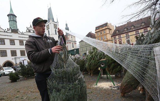 Prodej vánočních stromků vLitoměřicích