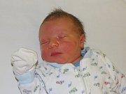 Matyáš Majerník se narodil Denise Žižkové a Vladislavu Majerníkovi z Kamýku 10.1. v 12.02 hodin v Litoměřicích. Měřil 54 cm a vážil 4,01 kg.