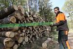 Deponie dřeva lesní hospodáři Lesů ČR ošetřují postřikem proti kůrovci a proto umisťují zákazy.