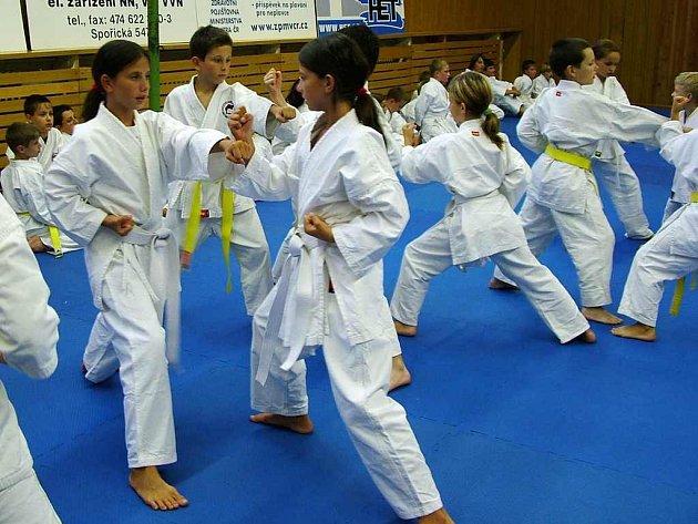PŘÍPRAVA. Mladí karatisté při tréninku.