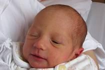 Karlovi Pejmlovi a Lence Rousové z Bohušovic nad Ohří se 19. prosince v 15.42 hodin v ústecké porodnici narodila dcera Nikola Pejmlová. Měřila 45 cm a vážila 2,2 kg. Blahopřejeme!