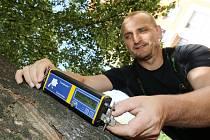Odborná firma začala v Lovosicích na parkovišti v ulici Osvoboditelů průklestem stromů od suchých nebezpečných větví.