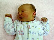 Stela Svítilová se narodila Janě a Ondřeji  Svítilovým z Podsedic 2.11.v 4:08 hodin  v Litoměřicích (52 cm a 4,24 kg).