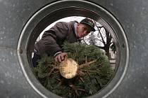 Prodej vánočních stromků v Litoměřicích