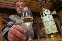 Svatomartinské víno v Litoměřicích.