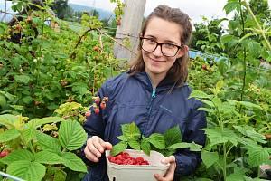 Dobrovolníci z celé Evropy pomáhají v Českých Kopistech ve Svobodném statku na soutoku. Poznávají tam ekologické zemědělství, poznávají tamní komunitu, poznávají Česko, ale také se zlepšují v angličtině.