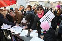 Demonstrace v Litoměřicích.
