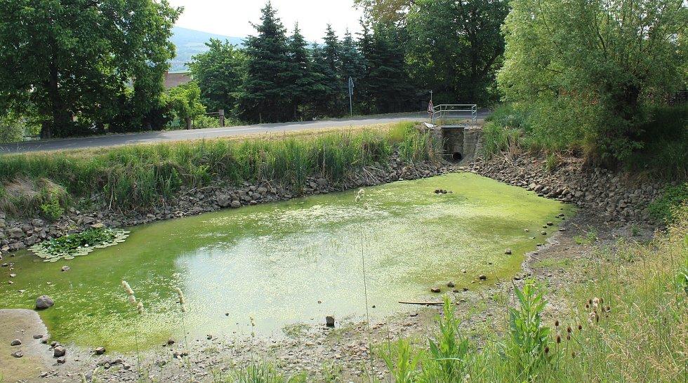 Rybník v Prackovicích nad Labem je bez vody. Řešení jak ji tam opět vrátit obec hledá.