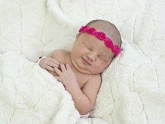 Amy Elli Bačáková se narodila Věře Moravcové a Davidu  Bačákovi z Litoměřic 24.2. v 10:33 hodin v Roudnici n.L. (3,32 kg a 50 cm).