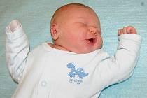 Janě a Petrovi Vodenkovým z Jenčic se 19.11. ve 23.17 hodin narodil  v Litoměřicích syn Petr Vodenka (50 cm, 3,75 kg).