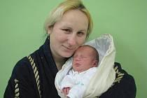 Jaroslavě a Janovi Tregnerovým z Třebenic se v litoměřické porodnici 29. listopadu ve 2.25 hodin narodil syn Alexej Tregner. Měřil 52 cm a vážil 3,7 kg. Blahopřejeme!
