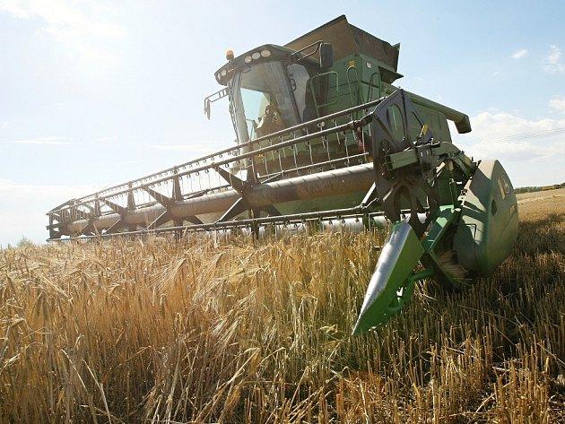 Kombajny sklízejí nezralé suché obilí. Škodila vedra