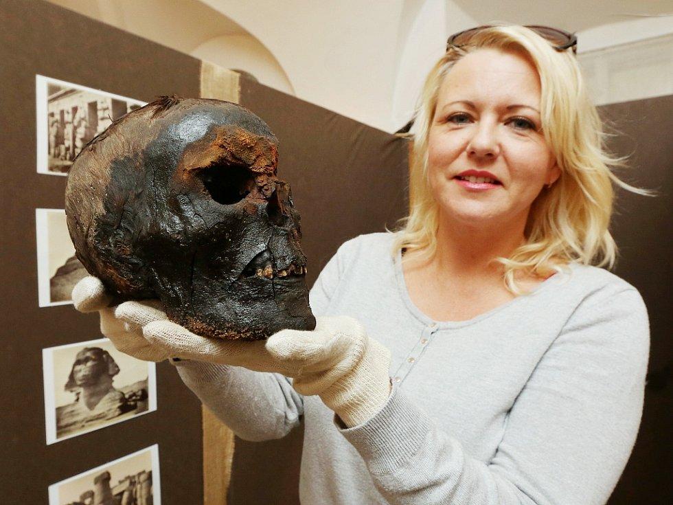Michaela Prokopová, správce depozitáře, ukazuje hlavu mumie ze sbírky hraběte.