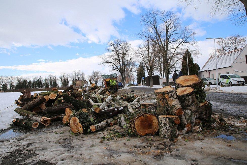 Odborná firma odstraňuje nestabilní a dožívající dřeviny také na roudnickém městském hřbitově