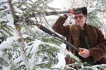 Revírník Jiří Fritz provádí na snímku zastřihávání smrčků v lese nad Milešovem.