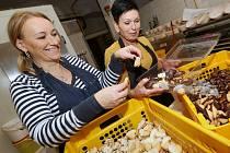 V pekárně Petra Kohna v Litoměřicích už mají napečeno a cukroví balí do průhledných krabiček.