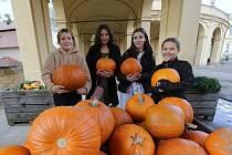 V sobotu proběhl podzimní trh na zámku v Ploskovicích.