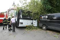 V Terezíně spadl strom na autobus.