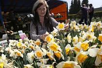 Na výstavišti jsou desítky prodejců nejen sadby, ale také zahradní techniky a dalšího sortimentu.