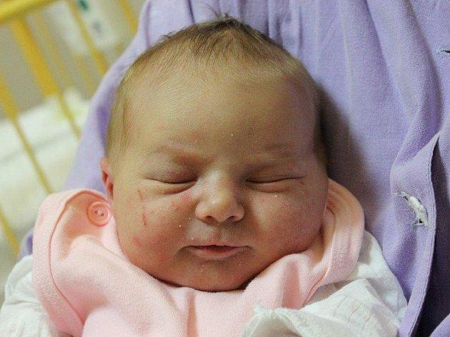 Kateřině Bílkové z Libochovan se 26.1. v 12:08 hodin narodila v Ústí nad Labem dcera Štěpánka Bílková (3,38 kg a 48 cm).