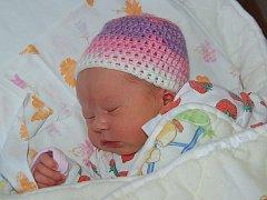 Kateřině a Romanu Vašákovým z Hoštky se 19.3.  v 19.51 hodin narodila v Litoměřicích dcera Alžběta Vašáková (50 cm, 2,95 kg).
