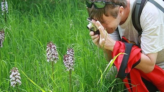 I přesto, že nám omezení v rámci současné situace překazila spoustu plánů, na vycházky na orchidejové lokality pozemkových spolků Českého svazu ochránců přírody se nakonec dostane.