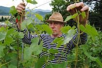 Vinařství pod vedením Aleše Svatoše (na snímku)produkuje takzvaná autentická vína, tedy vína s minimem chemických zásahů jak na vinici, tak ve sklepě.