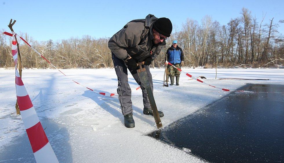 Mrazivé dny vytvořily na rybnících silnou vrstvu ledu a ryby nemají kyslík. Proto rybáři vysekávají do ledové masy díry, aby proniklo pod led světlo a kyslík pro ryby.