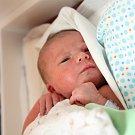 Vilém Jeřábek se se narodil Lence a Pavlu  Jeřábkovi z Litoměřic 1.1.2019 v 4.42 hodin v Litoměřicích. (55 cm a 3,63 kg).
