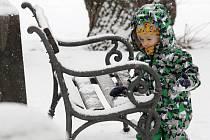 Sněhová nadílka v Litoměřicích, 12. ledna 2021