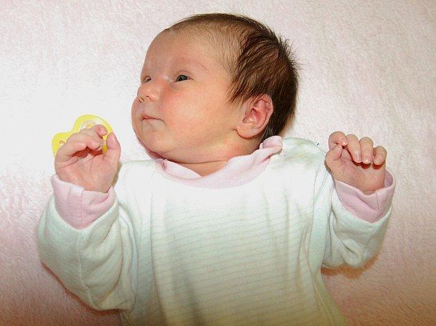 Daniele a Michalu Novotným z Hrušovan se 6.12. v 4.13 hodin narodila  v Litoměřicích dcera Dorotea Novotná (3,19 a 50 cm).
