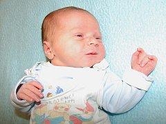 Lence a Jiřímu Novotným z Lovosic se 28.10. v 12:30 hodin narodil  v Litoměřicích syn Martin Novotný (3,75 kg a 51 cm).