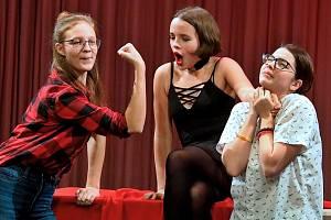 Večer plný scének, pantomimy i přednesu žáků literárně dramatického oboru ZUŠ v Litoměřicích.