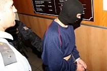 Vrah devítileté Elišky je nyní ve Vazební věznici v Litoměřicích.