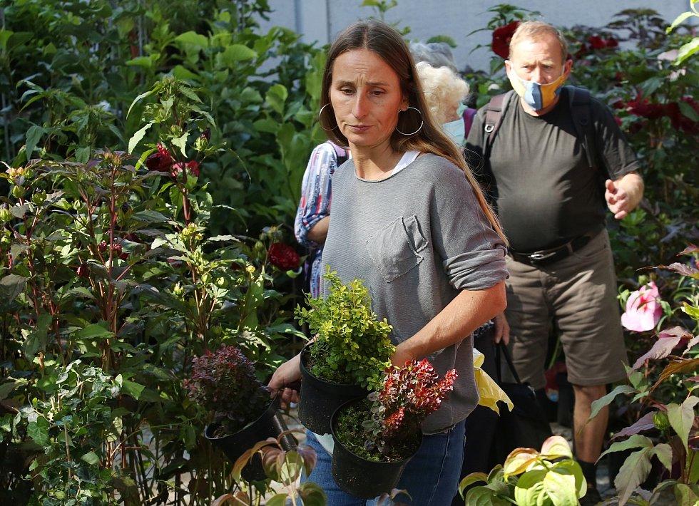 Tradiční zahradnický veletrh Zahrada Čech 2020 otevřel v pátek návštěvníkům svoje brány.