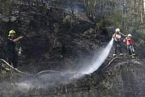 Plameny se ve středu 1. srpna dopoledne vzňaly vlese u Litochovic nad Labem.