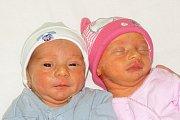 Denisa Kollárová a Dominik Kollár se narodili Anně a Janu Kollárovým z Podviní 2. ledna 2019 v 11.22 a 11.26 hodin v Litoměřicích. Měřili 44 a 46 cm a vážili 2,13 a 2,3 kg.