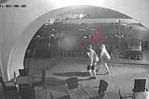 Litoměřičtí policisté pátrají po zloději a dvou svědcích, kteří si pachatele případně mohli všimnout.