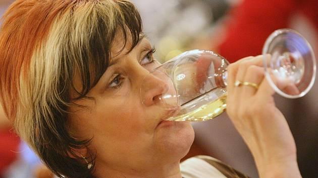 Prestižní soutěž vín předcházející výstavě Vinařské Litoměřice se uskutečnila na Kolibě.