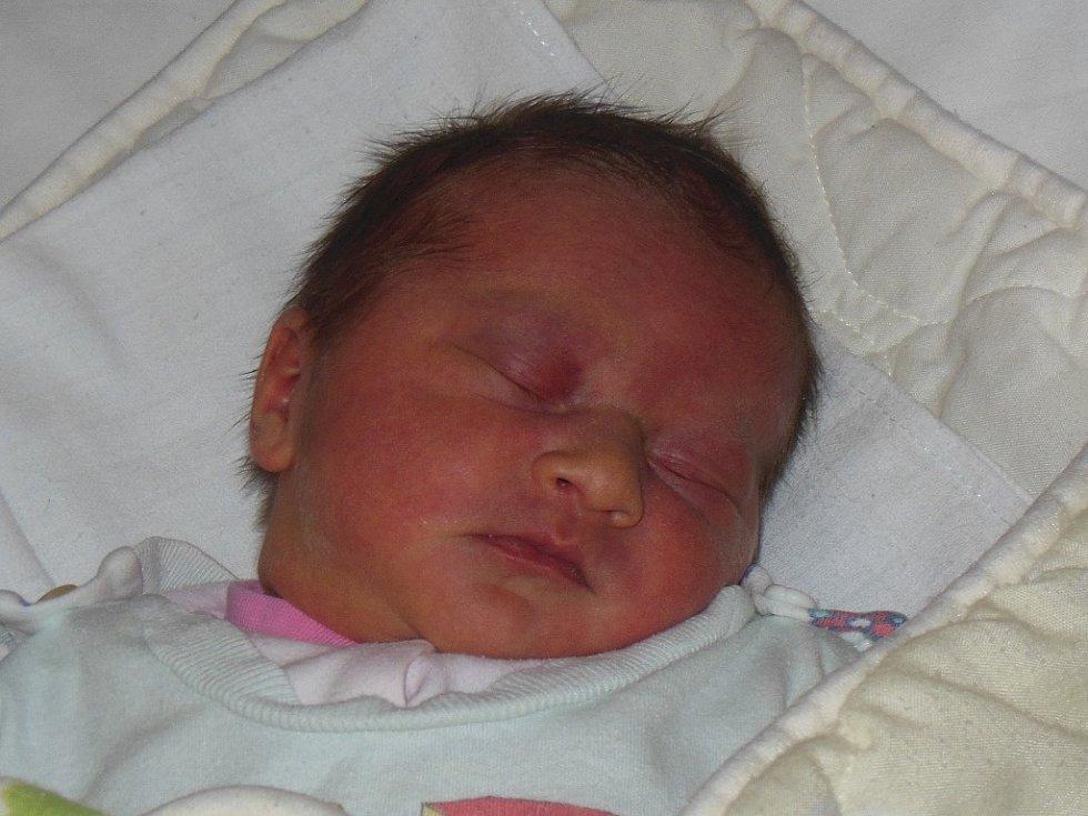 Nikole a Jaroslavu Košovým z Litoměřic se 16.12. ve 13.20 hodin narodila v Litoměřicích dcera Adéla Košová (49 cm, 3,34 kg).