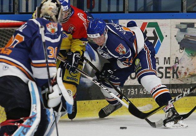 hokej, Litoměřice a České Budějovice