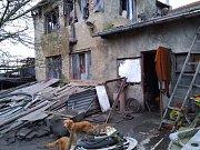 Dům, ve kterém psi žili, je zanedbaná ruina.
