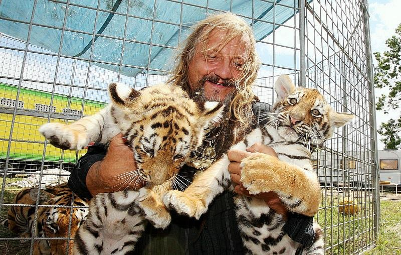 Principál cirkusu Jo-Joo Jaromír Joo představuje tygří mláďata