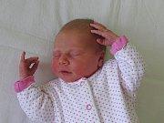Julie Jarošová se narodila Haně a Ondřeji Jarošovým z Třebenic 10.4. v 19.10 hodin v Litoměřicích (51 cm a 3,42 kg).